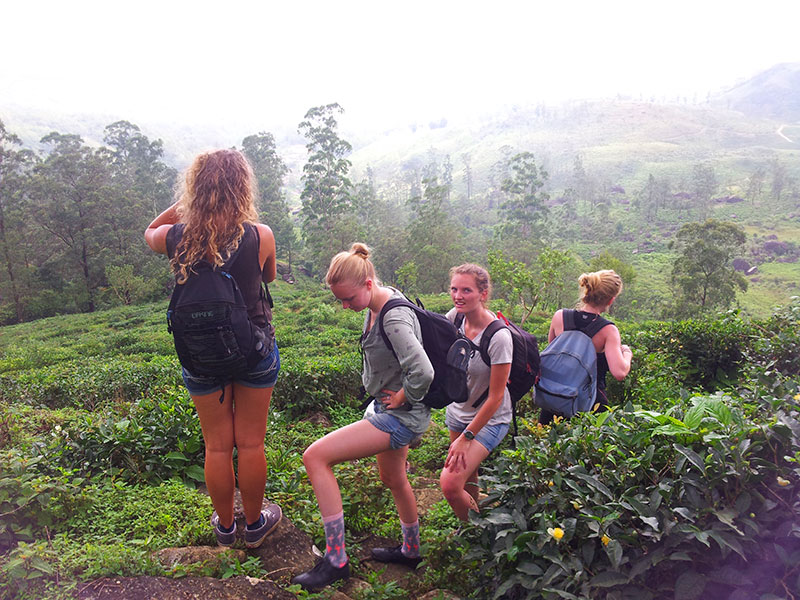 Best things to do in Knuckles - Places to Visit in Knuckles - Attractions in Knuckles - Top Things to do in Knuckles - Knuckles experiences - Leisure places in Knuckles - Knuckes Trekking - Trekking in Knuckles Mountain Range