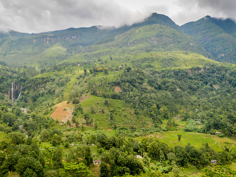 Best things to do in Meemure - Places to Visit in Meemure - Attractions in Meemure - Top Things to do in Meemure - Meemure experiences - Leisure places in Meemure - Meemure village - Trekking in meemure - Village - Sri Lanka